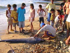Fisherfolk's catch - Blue Marlin