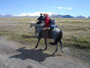 on the Ukok Plateau
