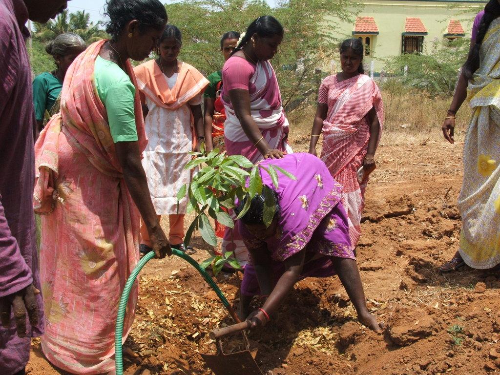 Organic Farming Training to 500 Farmers in India