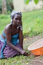 Teddy Namagembe, a Ugandan coffee farmer client.