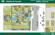"""Ceiba pentandra""a unique environmental theme park"