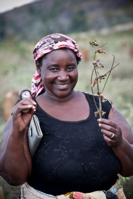 Isabelle is a soybean farmer from Mozambique