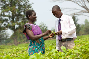 In Malawi Sinyala Chafala & her loan officer meet.