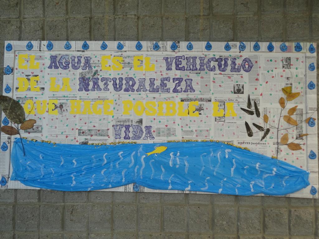 Environmental activities in local public school