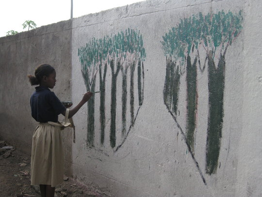 The Mural Project studied local plants and animals
