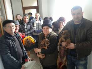 Tecuci spayathon for 97 animals