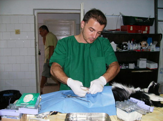 Dr. Aurelian Stefan