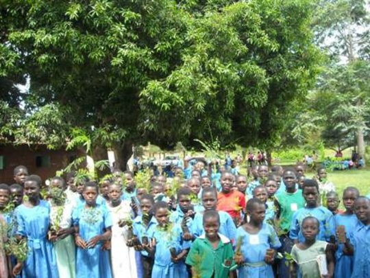 FRUITS FOR NUTRITION IN 25 SCHOOLS