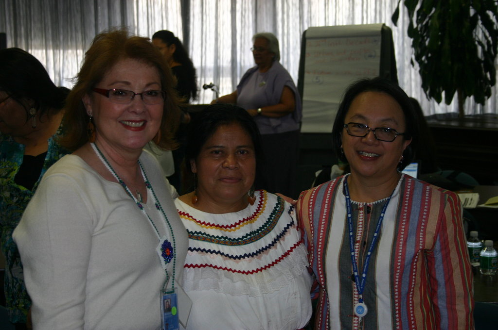Empower Indigenous Women's Leadership at the UN