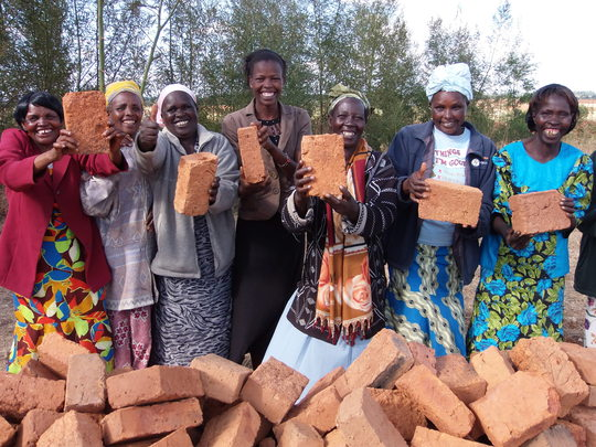 Happy women with bricks, Koshyn