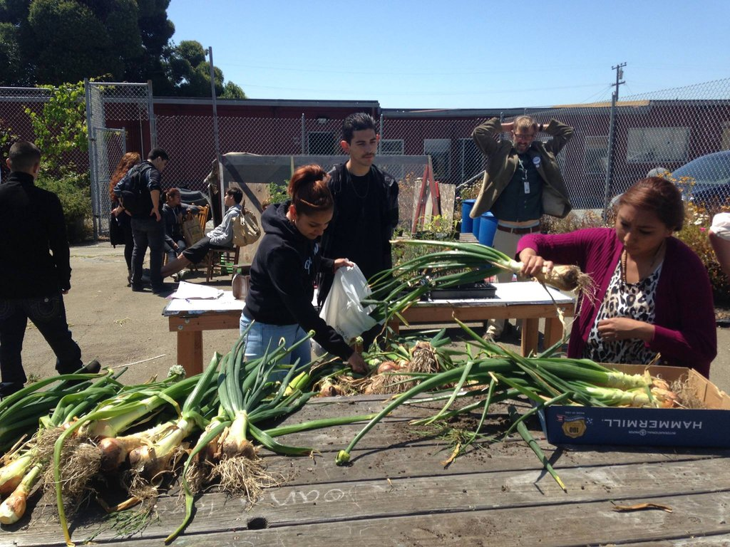 Students taking onions home to their families!