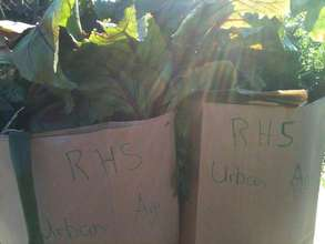 Recycled paper bags for the CSA - simple solutions