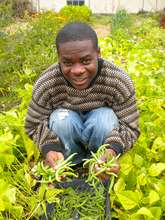 Student with Green Fruits of his Labor