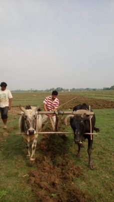 Field Exposure to know farmers' expectations
