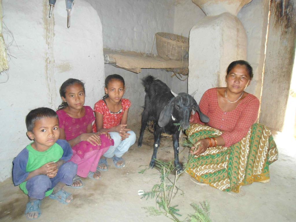 Tharu women with Goat, Dang