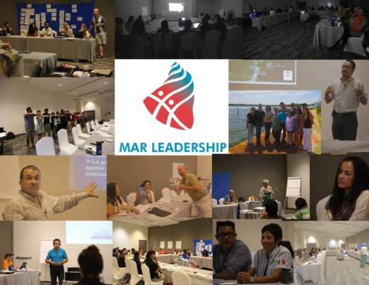 2015 1st Workshop in Cancun: mangrove valuation