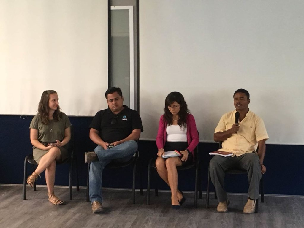 Experts panel