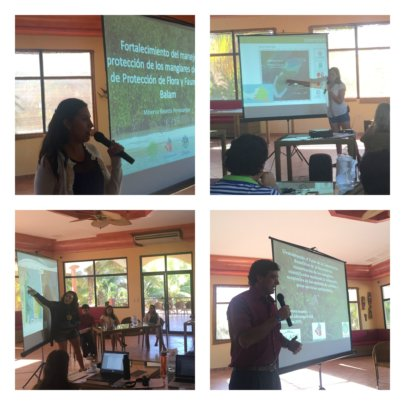 Fellows presenting their projects