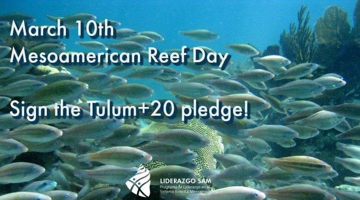 Sign the pledge!