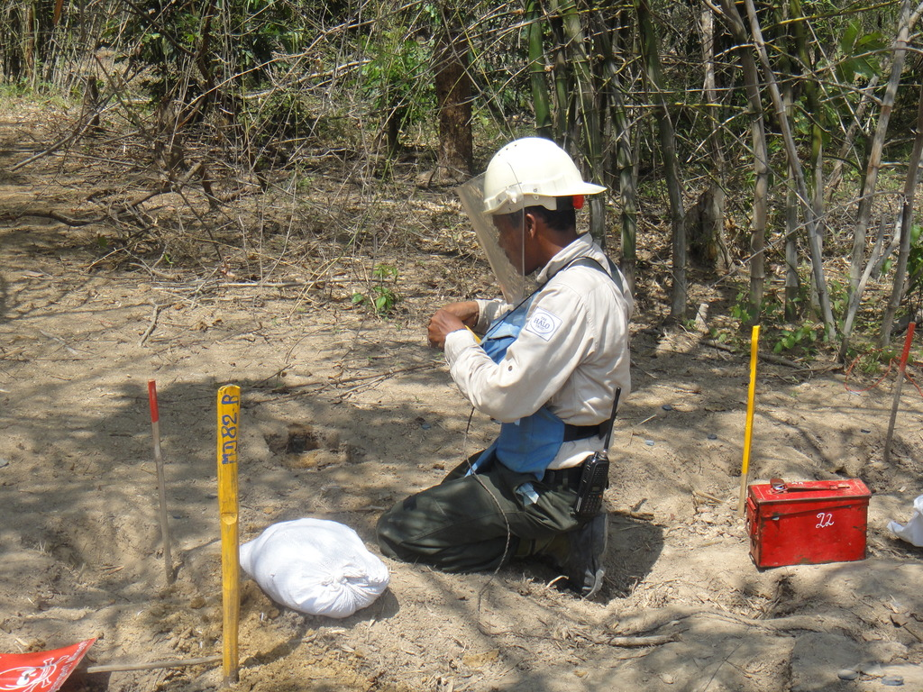 exposing a live landmine to be destroyed