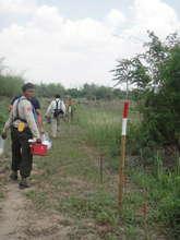 Walking along the minefields