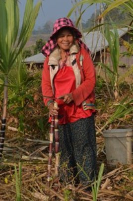 Senan, beneficiary and deminer