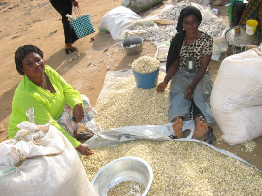 PMI Clients selling dry corn in Butembo DR Congo