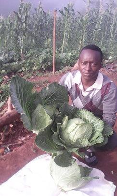 Presence Mutundi with cauliflowers from his garden