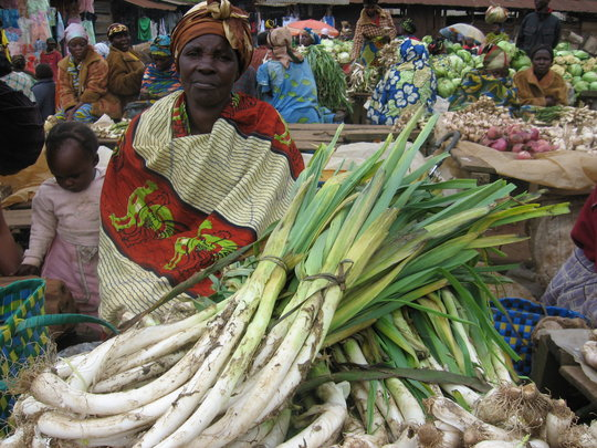 Micro Loans to rebuild lives in Eastern D.R. Congo