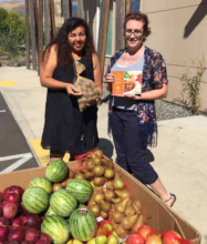 Monthly produce improves lives in Celilo Village