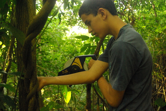 Junior Scientist Joao Pedro collecting tree