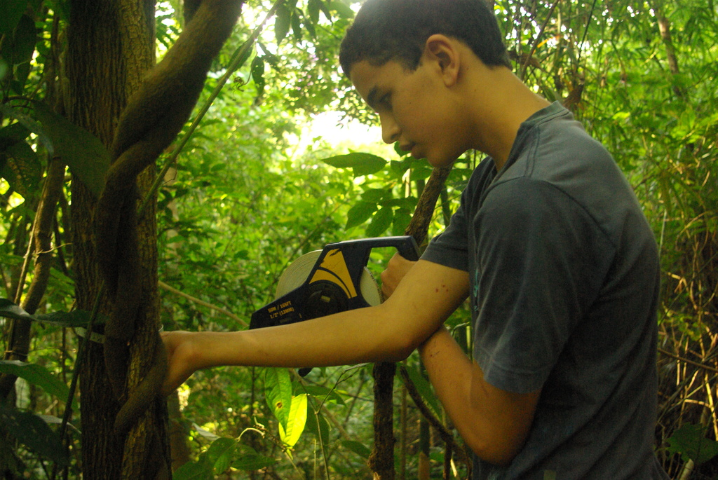 Junior Scientist Joao Pedro collecting tree