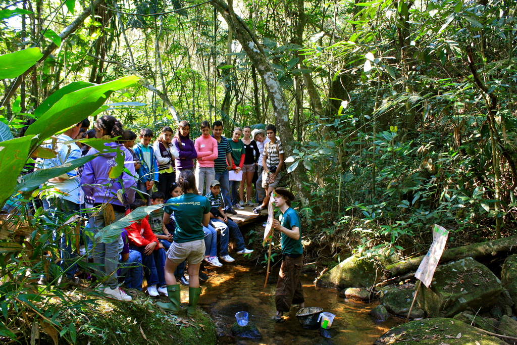 forest water monitoring