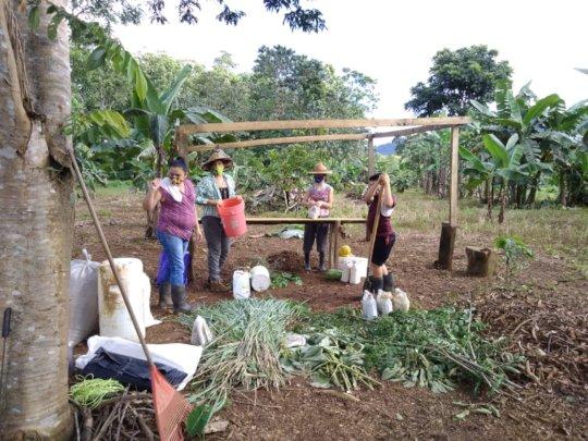 Regenerative agriculture 2