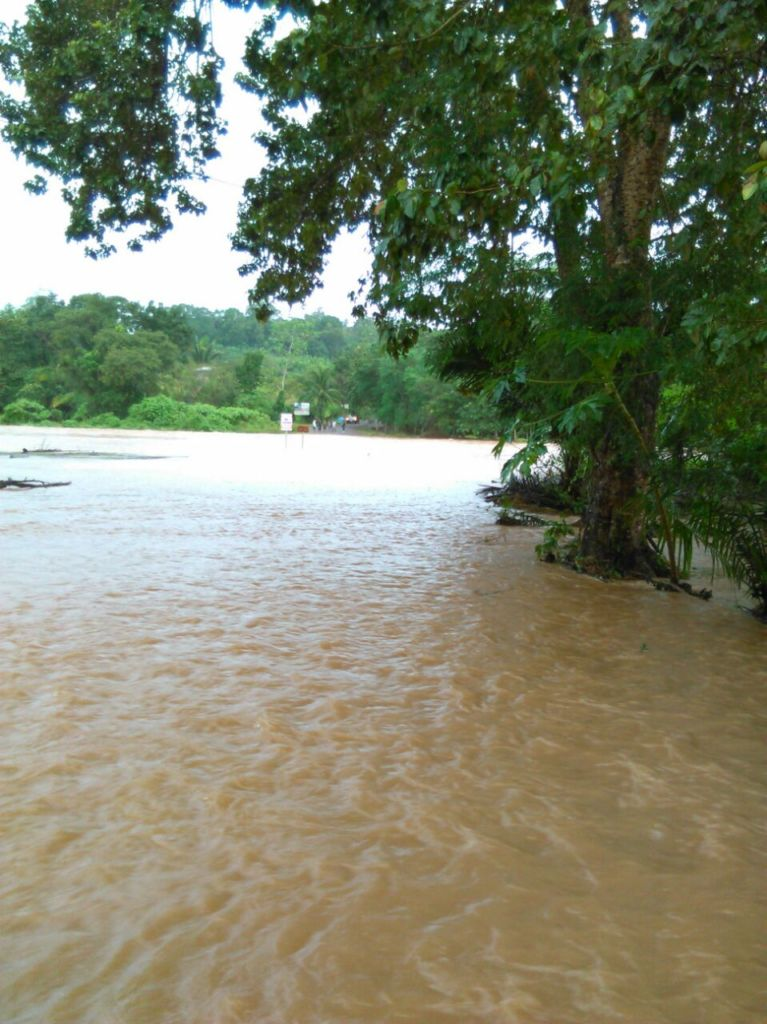 Rivers flooded