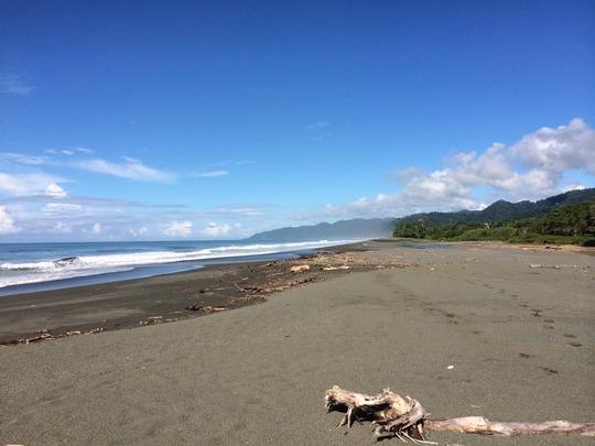 Rio Oro beach in the Osa Peninsula