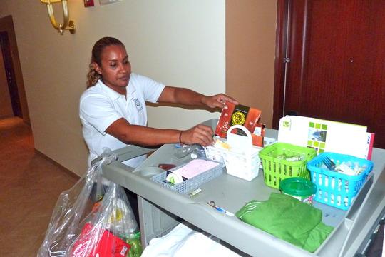 Vielka organizing her Housekeeping-goodies!