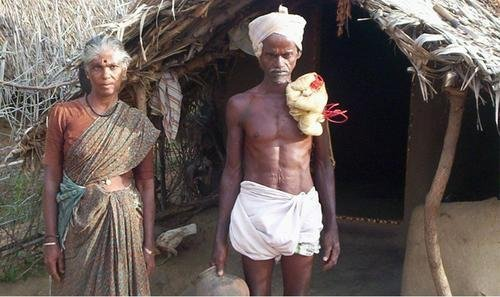 Integrated Development of Poor Tribal rat catchers
