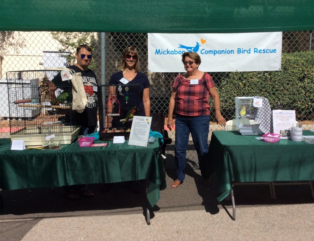 Mickaboo volunteers & birds at an outreach event