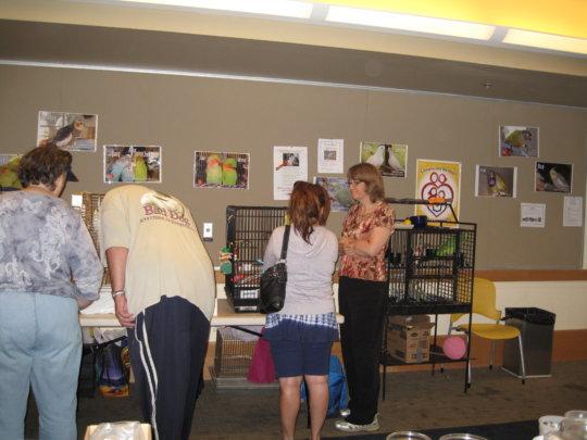 Mickaboo Bird Adoption Fair