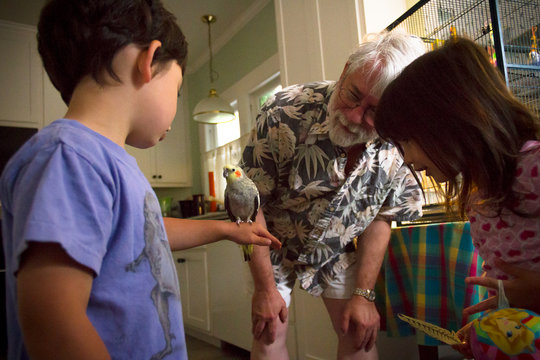 Grandpa teaches another generation about pet birds