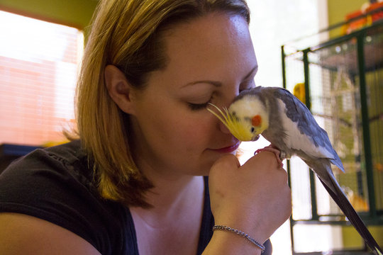 Love is a feathered friend