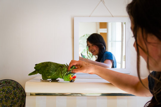 Rescue Unwanted and Abandoned Companion Birds - Give Green