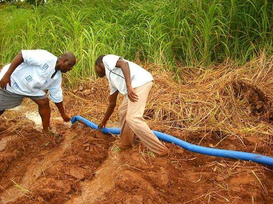 Irrigating the farm using the hose