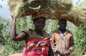 Build homes for an impoverished Rwandan community