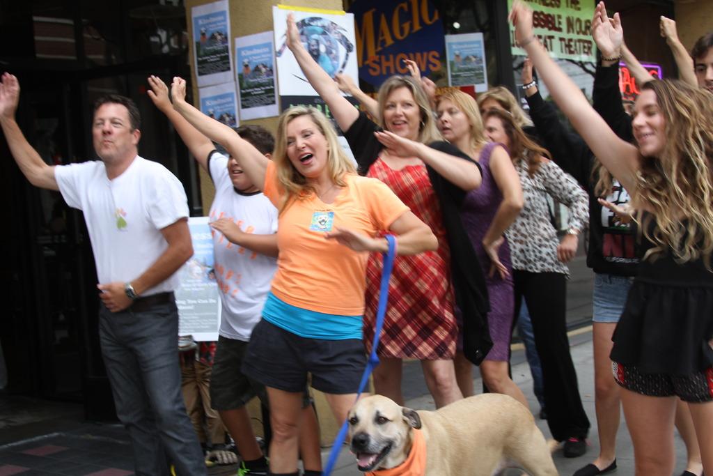 Flash Mob for Pet Adoption