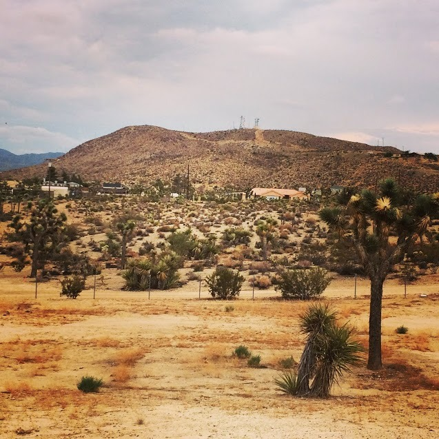 View @ Joshua Tree Retreat