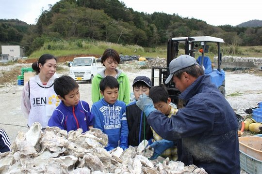 Learn, how to make mother shells to raise oysters.