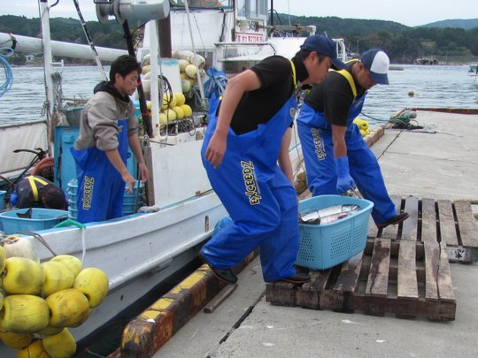 Revitalize the Fishing Industry in Northeast Japan