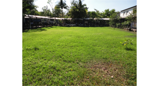Field where the swimming pool will be constructed
